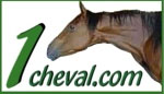 logotype 1cheval